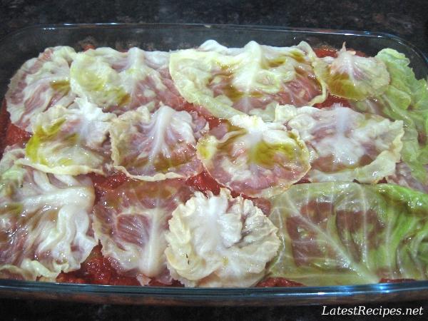 cabbage_rolls_1