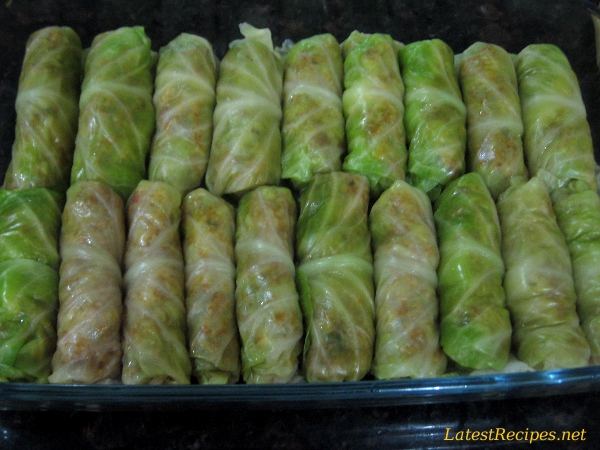 Cabbage Rolls Galumpkis Latest Recipes