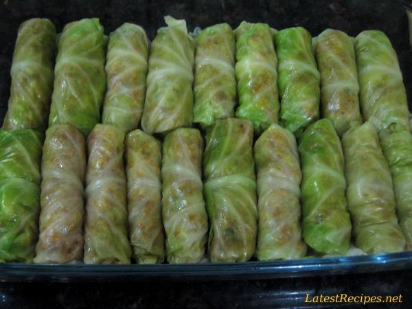cabbage_rolls_2