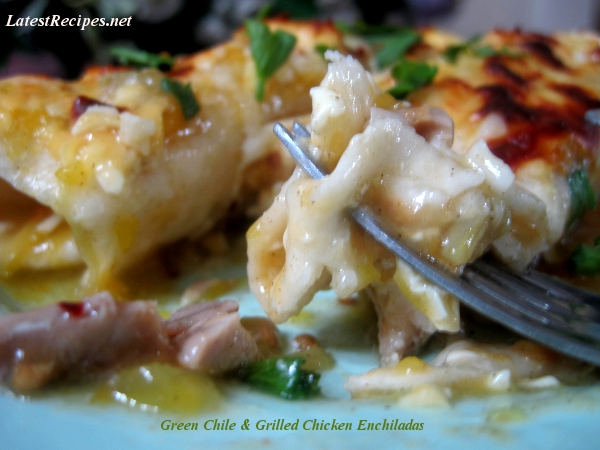 Green Chile and Grilled Chicken Enchiladas