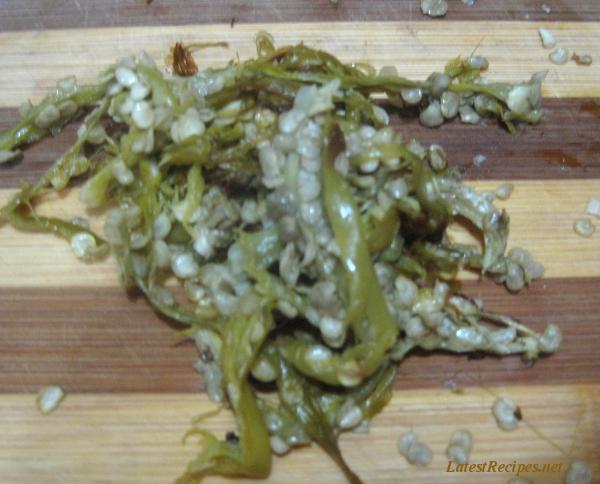 green_chillies_finger_chillies2